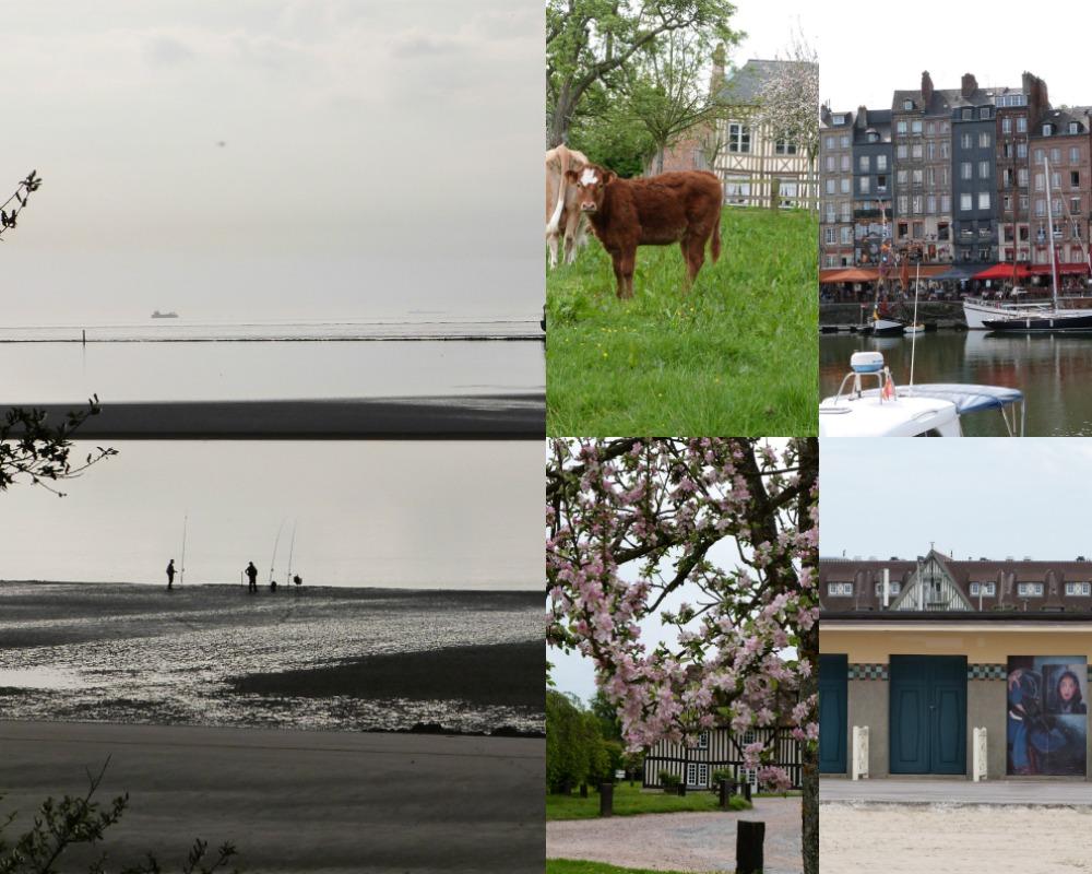 WE Normandie 2016