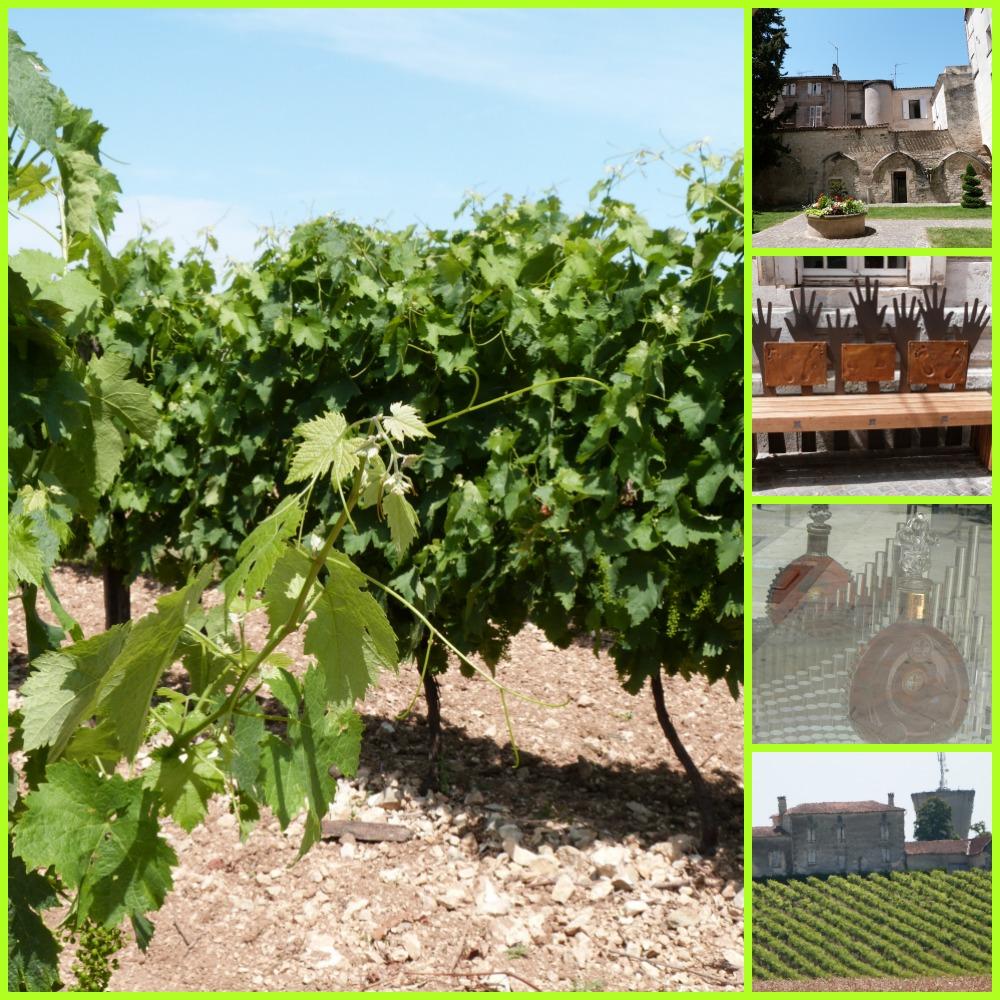 blog Charente